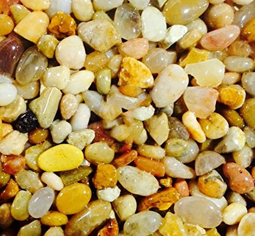 "Safe & Non-Toxic {0.2"" to 0.7'' Inch} 10 Pound Bag of Gravel, Rocks & Pebbles Decor for Freshwater & Saltwater Aquarium w/ Light Natural Beach Tone Tropical Style [Tan, Orange, White, Brown & Gray] by mySimple Products"