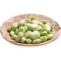 """Feve""""Bolero"""" - variété précoce produisant de tres grosses graines"""