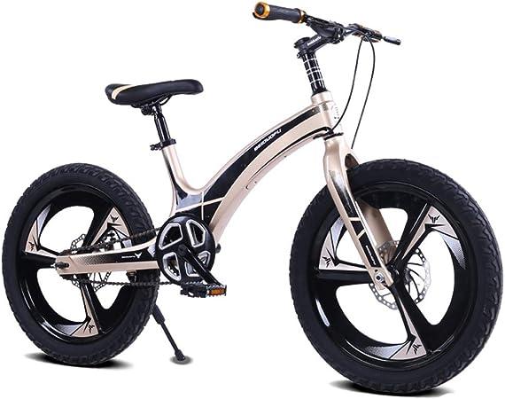 LISI Bicicleta de los niños de aleación de magnesio de 20 Pulgadas Macho y Hembra de montaña Estudiante Freno de Disco de Coche de una Sola Velocidad en Bicicleta para niños,Gold: Amazon.es: