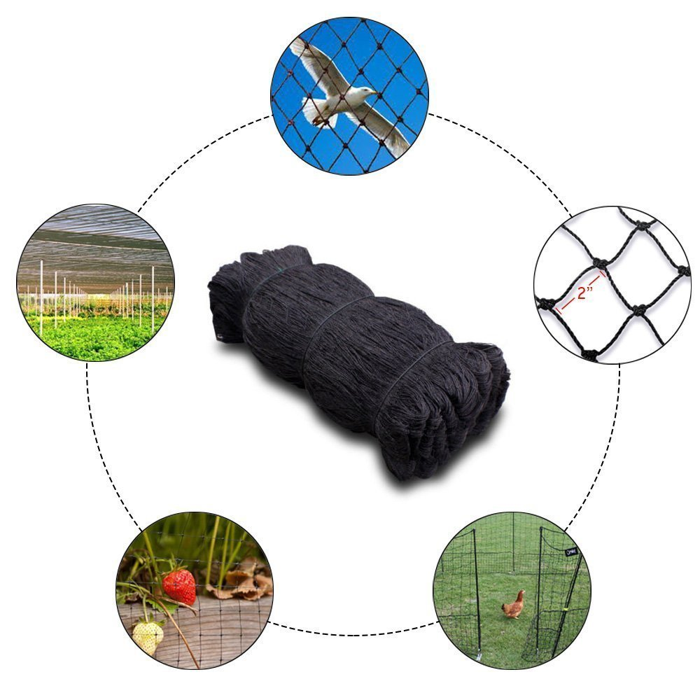 25'X50'/50'X50'/50'x100'/100'x100', Net Netting for Bird Poultry Aviary Chickens Game Pens (100' x 100') by Mcage