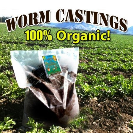 amazoncom earthworm castings 25 pounds 100 organic natures soil amendment for indoors u0026 outdoors soil and soil amendments garden u0026 outdoor