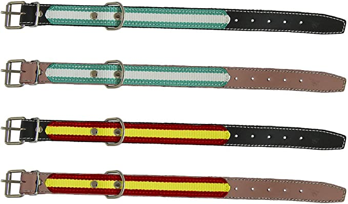 Mapel 622150 Collar de Perro con Detalle de Bandera y Costura 50 cm, Color Marrón: Amazon.es: Productos para mascotas