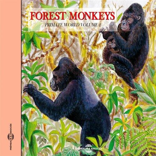 - The Lowland Gorilla 2