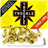 Trouble Skateboards 1 Inch Gold Skateboard Hardware | Allen Mounting Screws Bolts and Nuts (TH1)