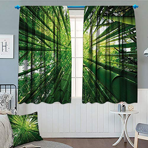 Nature, Thermal Insulating Blackout Curtain, Upward Bamboo Stems in Jungle Rainforest Exotic Lush Tree Woodland Shadows Picture, Patterned Drape for Glass Door, 52x63 Inch Hunter Green