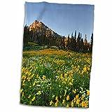 3dRose Danita Delimont - Utah - Willard Basin, Uinta-Wasatch-Cache, Utah, USA - US45 HGA0462 - Howie Garber - 12x18 Hand Towel (twl_147347_1)