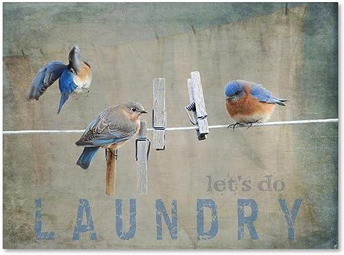 Laundry Day Bluebird