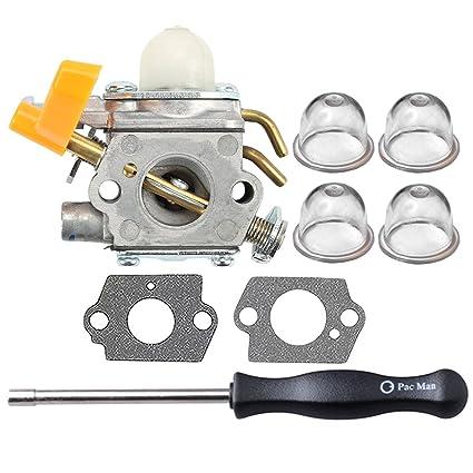 Amazon.com: HIPA 308054013 carburador con herramienta de ...