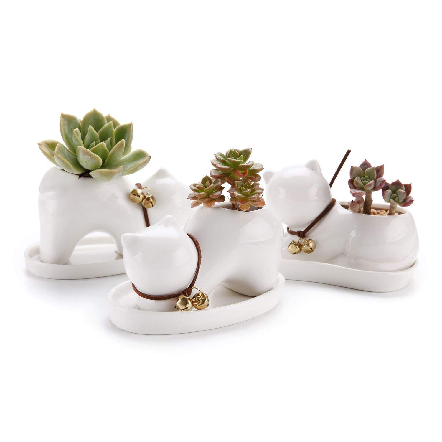 T4U Lazy Cat Ceramic Succulent Cactus Planter Pot Set with Golden Bell and Porcelain Saucer - Collection of 3, Home and Office Decoration Desktop Bonsai Pots Gift for Wedding Birthday Christmas