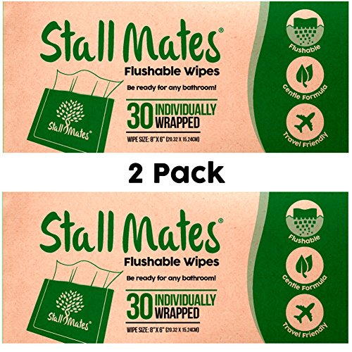 Stall Mates Wipes: Flushable, portable, eco-friendly bathroom wipes. (2 Pack) Moist Toilet Wipes