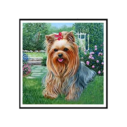 Image Unavailable. Image not available for. Color  Yorkshire Terrier 5D  Diamond Painting Crystals Embroidery DIY ... 905412f541c9