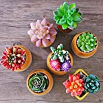 Dandevo-10-Pcs-Unpotted-Fake-Succulent-Flowers-Plant-Assorted-Colorful-Artificial-Succulents-Picks-in-Bulk-Realistic-Plastic-Faux-Silk-Stems-for-Bouquet-Terrarium-Home-Decor-Large-and-Small
