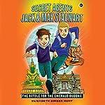 The Battle for the Emerald Buddha: Thailand: Secret Agents Jack and Max Stalwart, Book 1   Elizabeth Singer Hunt