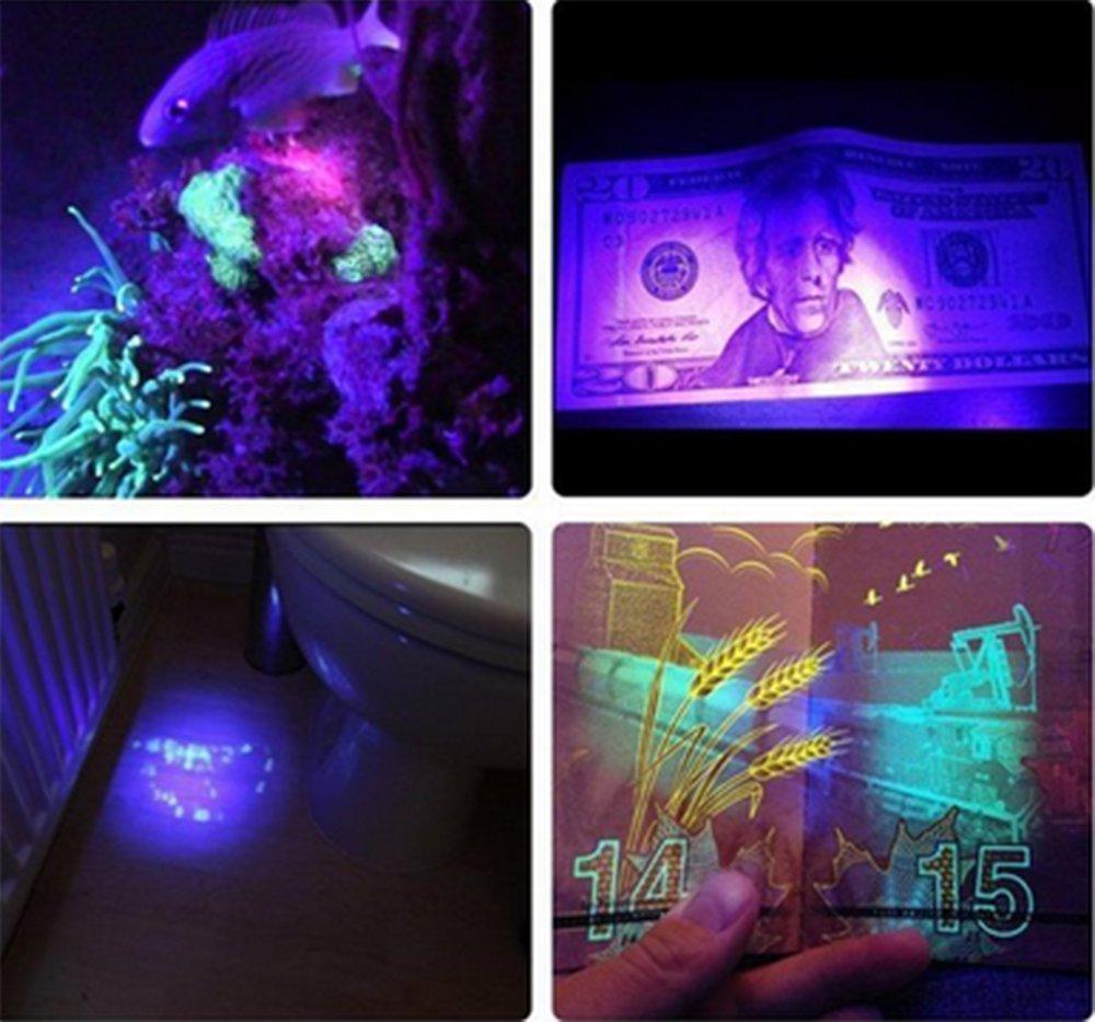 Apatner UV Black Lights Waterproof 5m/16.4ft SMD5050 395-405nm 300led Ultraviolet Purple LED Light Strip DC12V for DJ, Bar,Home,Garden Decoration(5050 Black PCB)