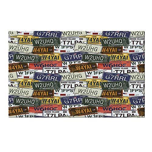 YOLIYANA USA Durable Door Mat,Retro American Auto License Plates Utah Washington Rhode Island North Carolina Print for Home Office,17.7