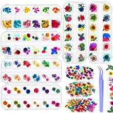 6 Boxes Dried Flowers for Nail Art, Audab 190 Pcs Nail Dried Flowers Mini Resin Flowers for Nail Art Resin Decoration