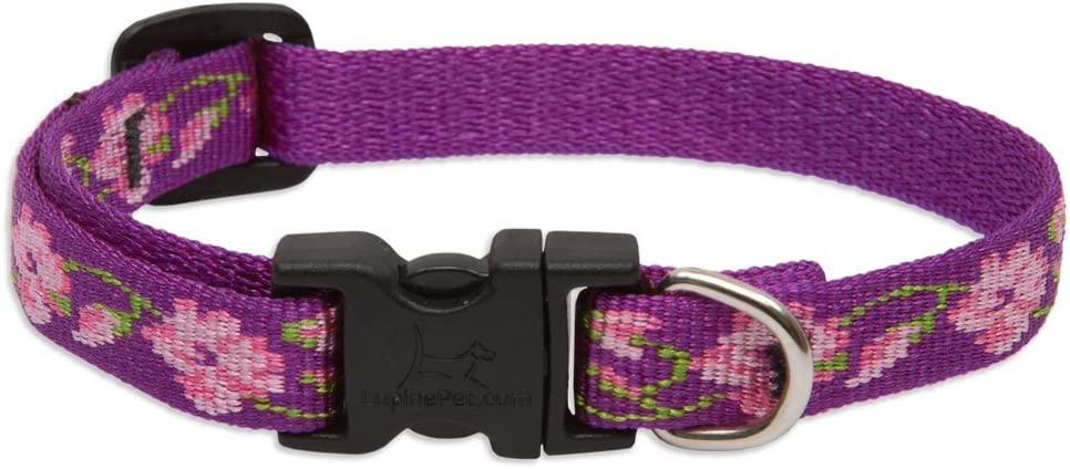LupinePet 1/2 Inch Rose Garden Adjustable Dog Collar for Small Dogs