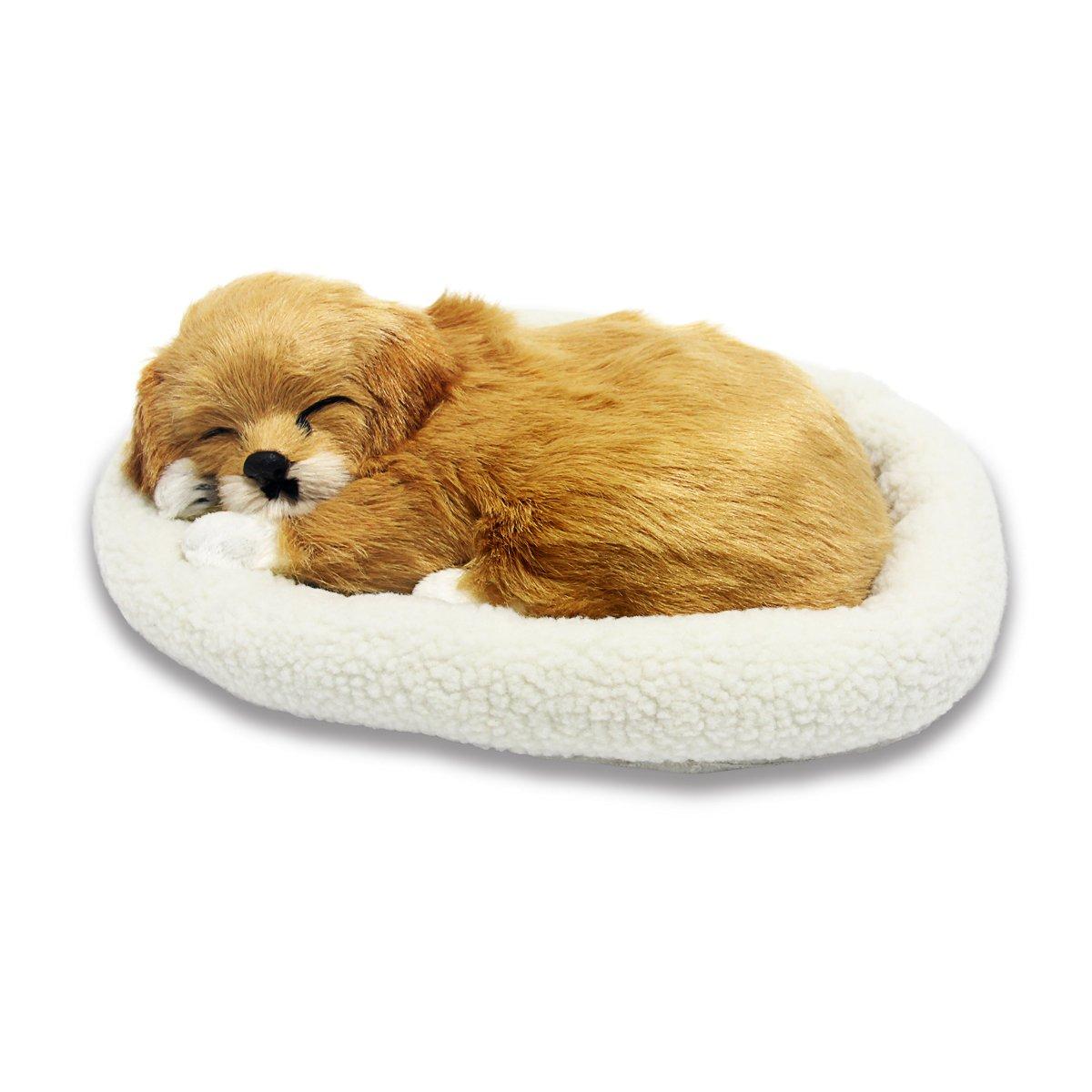 da6d17d921d1 Amazon.com: Signstek Emulation Sleeping Breathing Dog Toy Pet with Woolen  Bed: Toys & Games