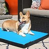 Gen7Pets Cool-Air Multicolor Dog Pad Blue For Sale