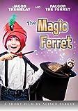 The Magic Ferret