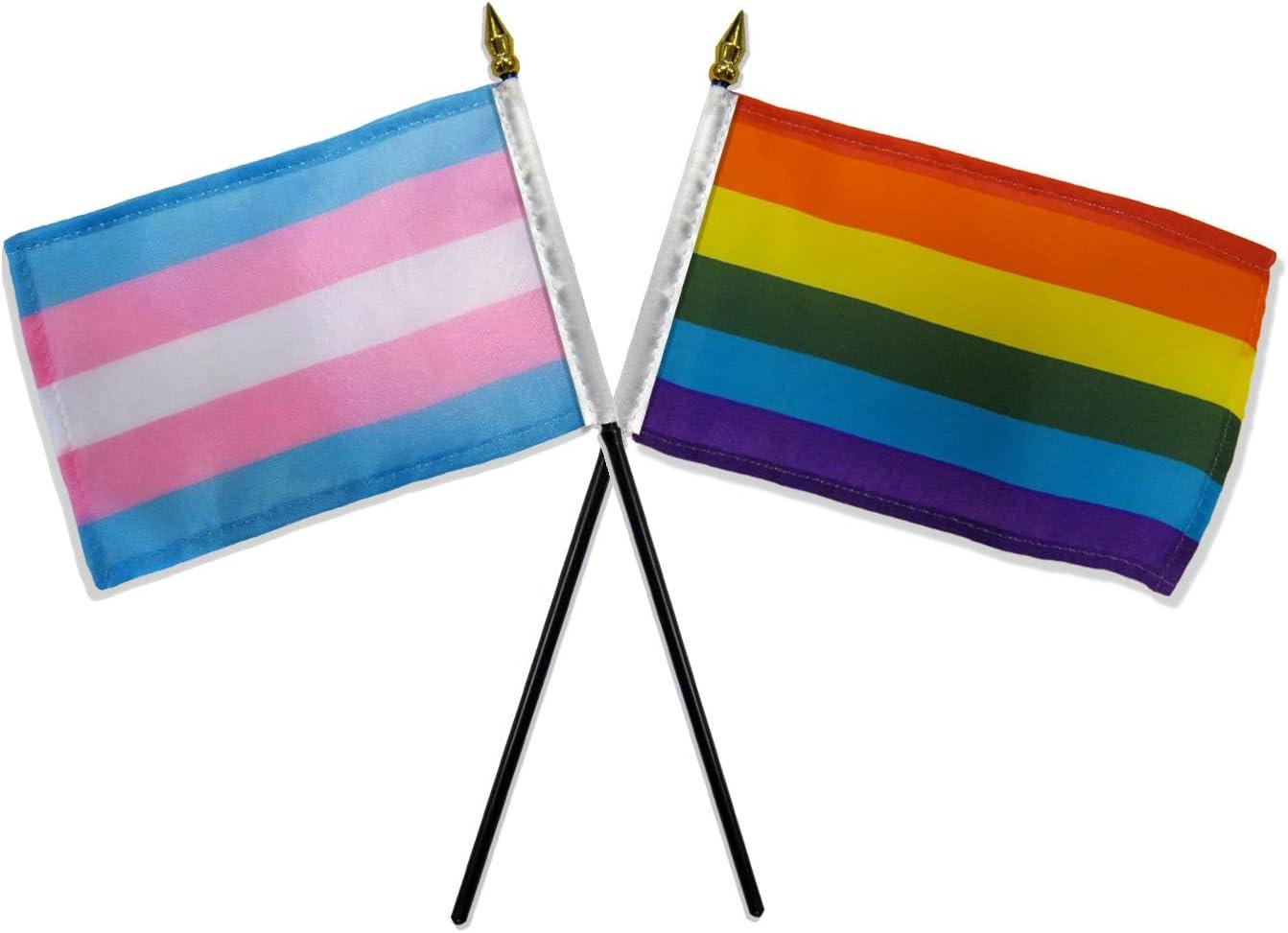 "AES Gay Pride Rainbow & Transgender Flags 4""x6"" Desk Set Table Black Base"