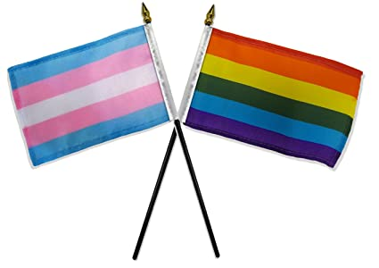 Image result for trans flag
