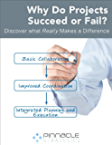 Why Do Projects Succeed or Fail?: Discover What Really Makes a Difference