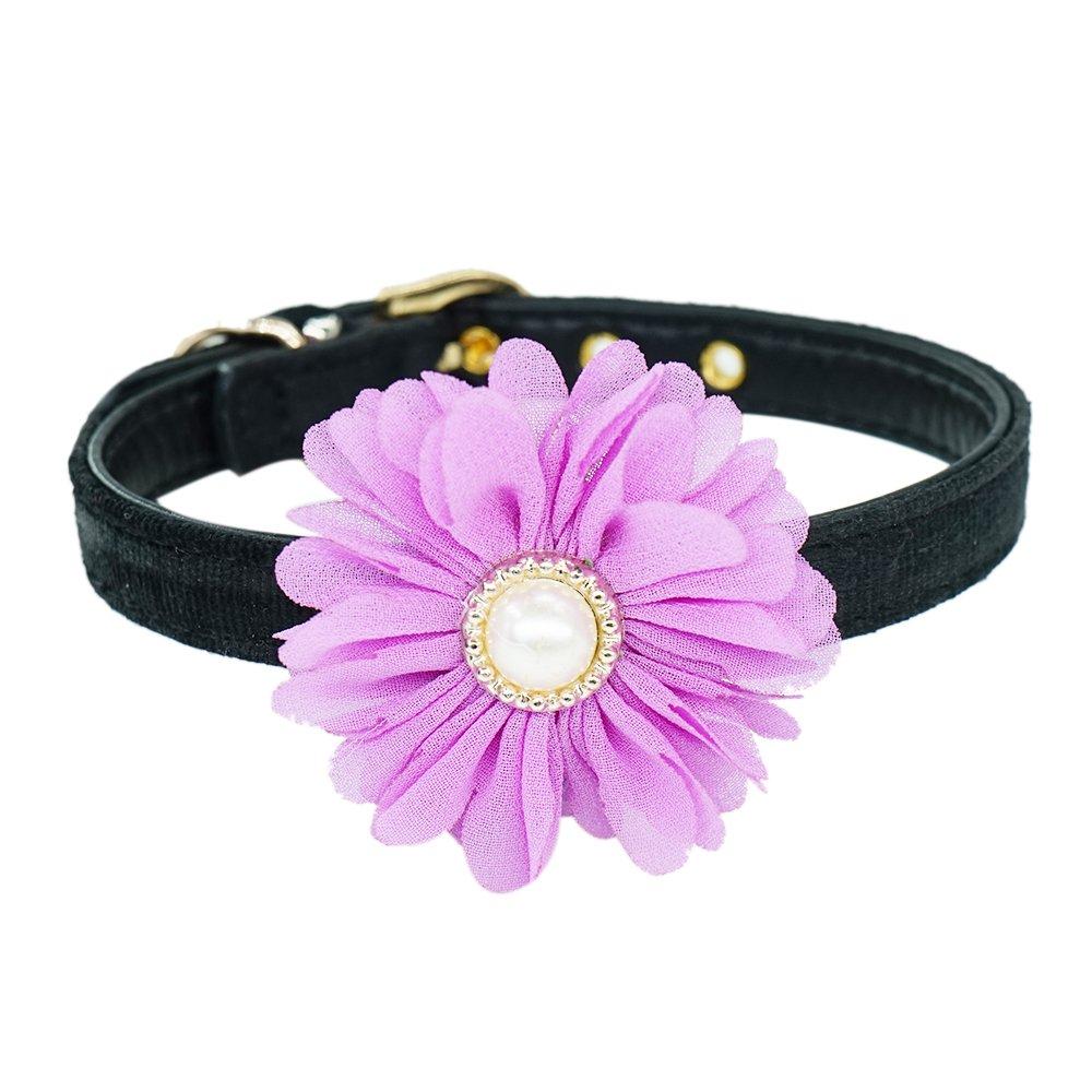 Purple XS Purple XS WONDERPUP Daisy Dog Cat Collar Adjustable Flower Leather Accessories Purple XS