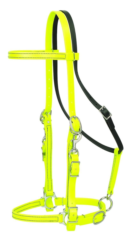Weaver Leather Trailhead Halter//Bridle Combination