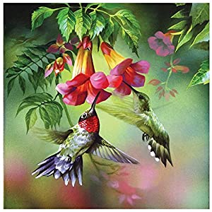 GLymg 5D Diy Diamond Painting Kit Hummingbird Rhinestones Embroidery Square Drill Mosaic Picture Home Decor (12X12 inch)