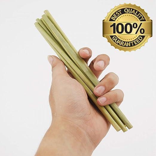 Pajitas de poliuretano termoplástico – Pajitas de césped verde ...