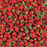 Hot Off The Press - Yummy Strawberries paper