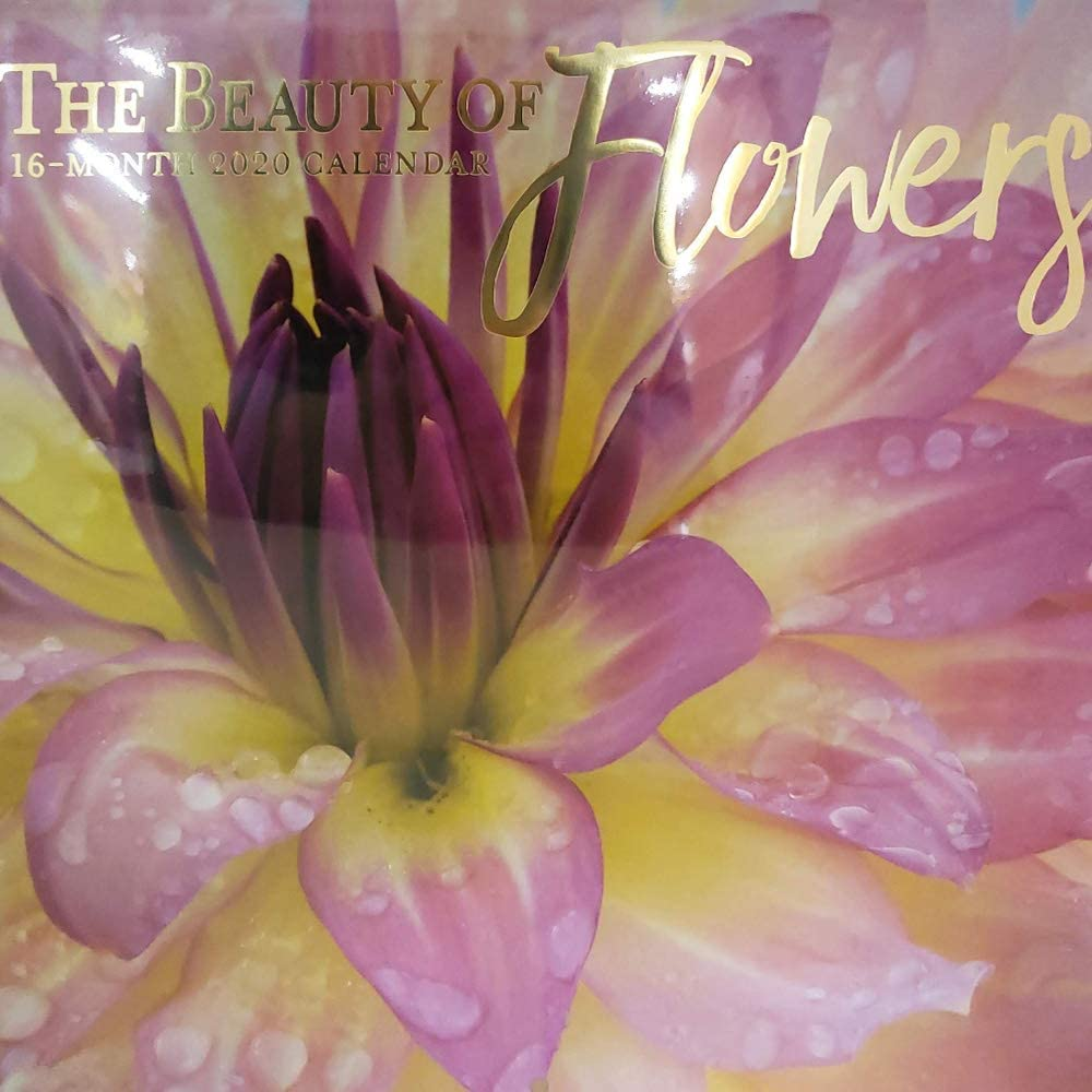 Wall Calendar 16-Month 2020 Full-Color Beautiful Nature and Inspirational Quotes Photographs Various Themes (Beauty of Flowers)