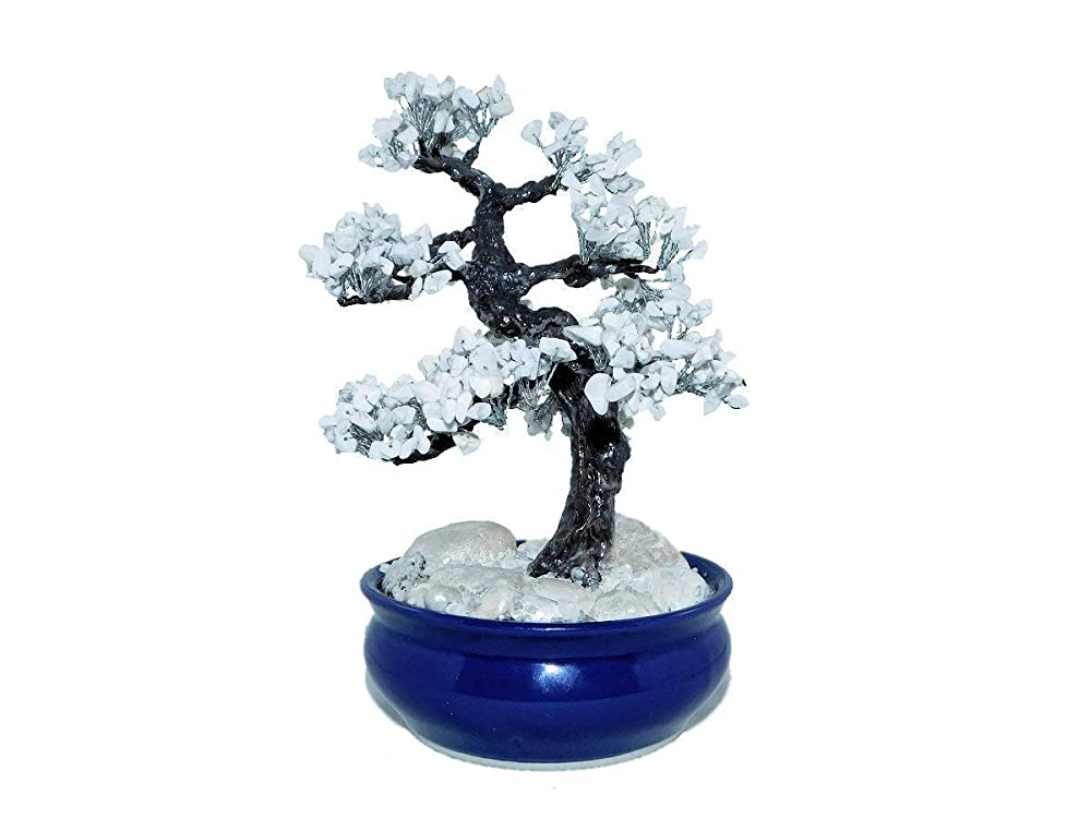 Amazon Com 8 7 Inch Winter Howlite Pine Bonsai Tree In Ceramic Pot Handmade Feng Shui Gemstone Tree Office Decor Handmade