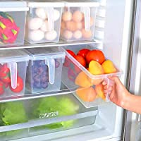 Kitchen Storage Containers with Handle, Strong Plastic Food Storage Organizer Boxes with Lids for Refrigerator, Fridge…