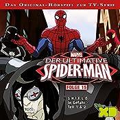 Der ultimative Spider-Man 15   Gabriele Bingenheimer