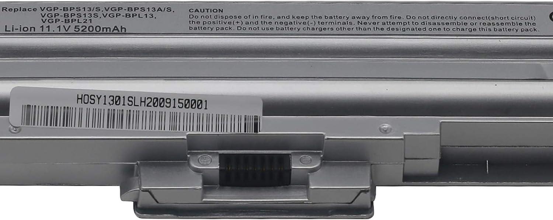 BTMKS Notebook Laptop Akku f/ür Sony VAIO VGP-BPS21A VGP-BPS13//Q VGP-BPS13//S VGP-BPS13A VGP-BPS13//B VGP-BPS13 VGP-BPS21 VGP-BPS21B VGP-BPL21 VGP-BPS13B//S VGP-BPS13A//B VGP-BPS13A//S Batterie Silber