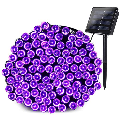 Purple Outdoor Solar Lights in US - 7