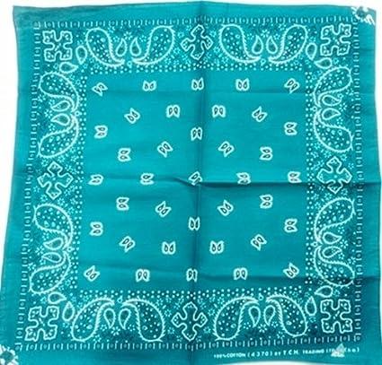 Amazon.com: 1 x Océano verde Paisley 20 inches algodón ...