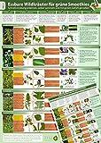 Essbare Wildkräuter für Grüne Smoothies - Erkennungskarte Teil 2 (2018) -Schnell eindeutig erkennen, selber sammeln und mit gutem Gefühl genießen (laminiert - DINA4)