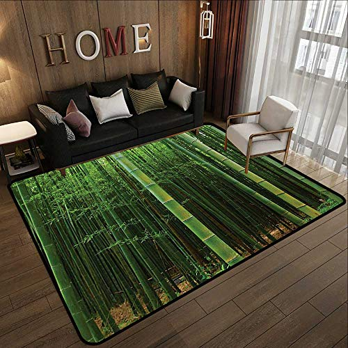All Weather Floor mats,Bamboo Decor,Picture of A Bamboo Forest Exotic Fresh Jungle Vision with Tall Shoots Tropic Wonderland Print,Green 35