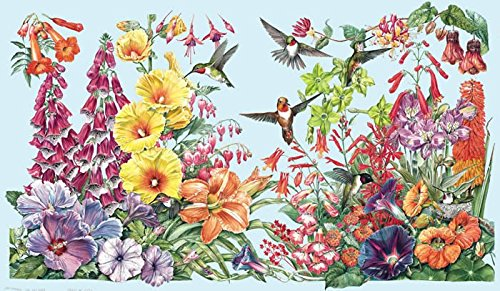 humming bird posters
