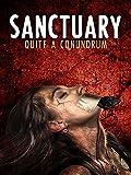 Sanctuary; Quite A Conundrum
