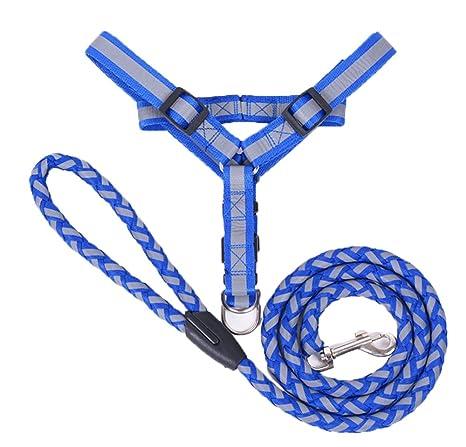 Seguridad para mascotas Light up Night Leash Cuerda Cinturón Dog ...