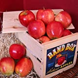 Gala Apple Crate
