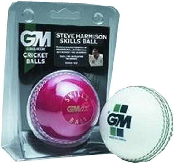 Gunn and  Moore Skills Ball