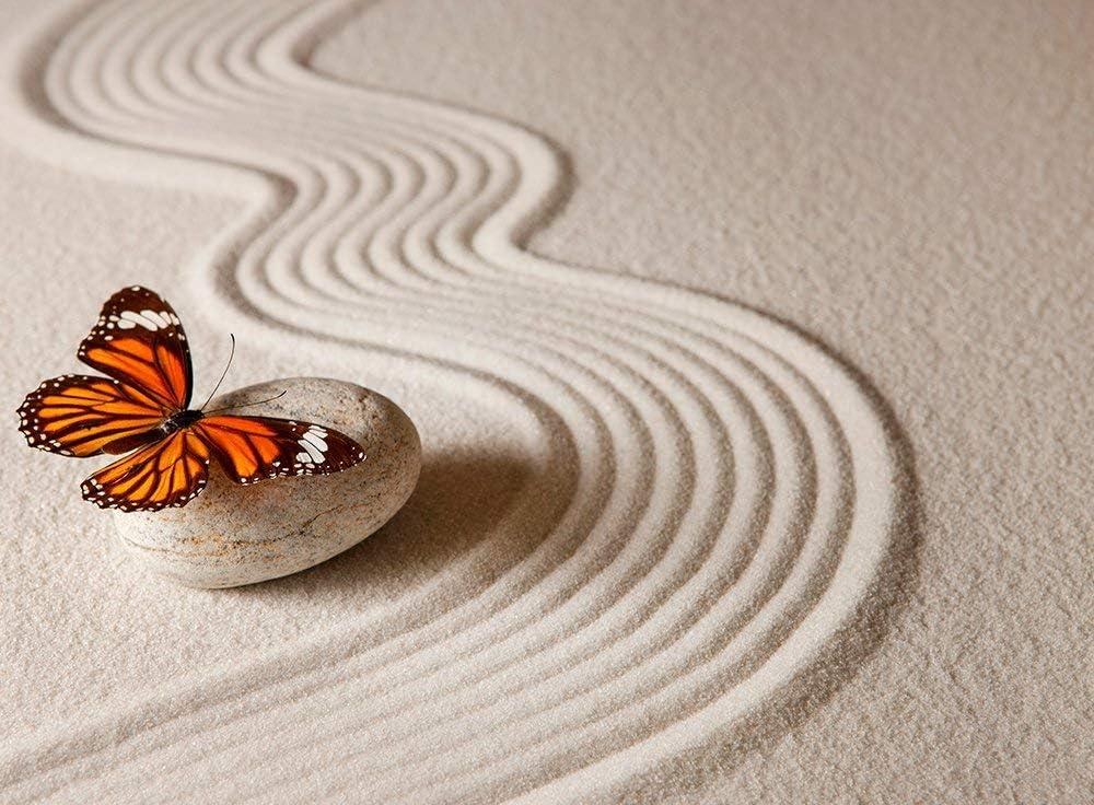 Cuadro Cartón Ecológico Jardín Zen Arena Mariposa | Varias Medidas 43x47,50cm | Decoración Habitación Diseño Elegante | Cantos Impresos |: Amazon.es: Hogar