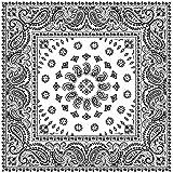 "Large 100% Cotton Square Burst Paisley Bandanas (22"" x 22"") - White Dozen Packed 22x22 - Use For Handkerchief, Headband, Cowboy Party, Wristband, Head Scarf - Double Sided Print"