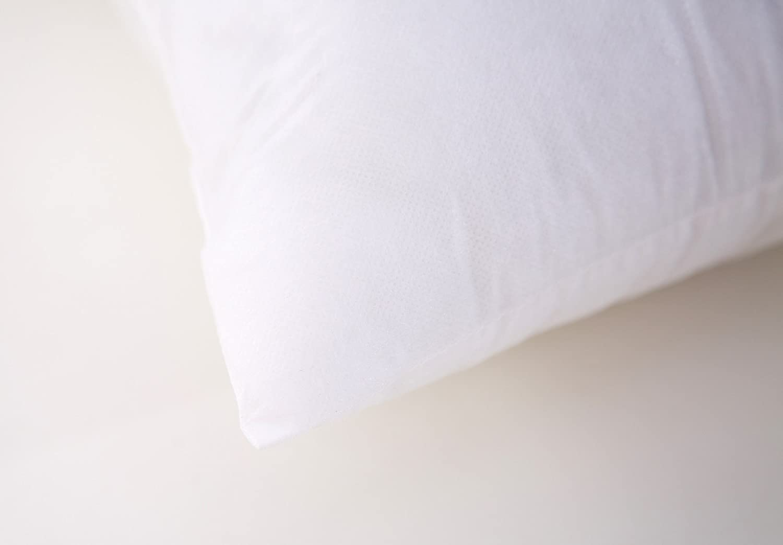 Acanva Square Basic Poly Pillow Insert 22 L x 22 W White 2 Pack