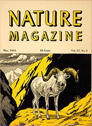 1944 Cover Lithograph Nature Mag. Dall Mountain Sheep Hexom Wildlife Art YNM5 - Original - Color Vintage Mag
